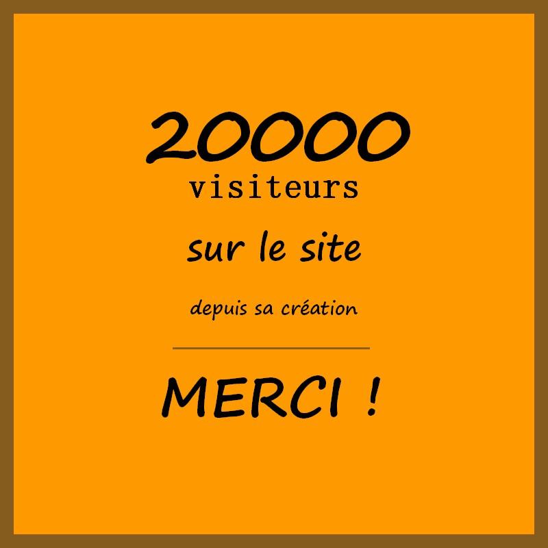 20000 visiteurs
